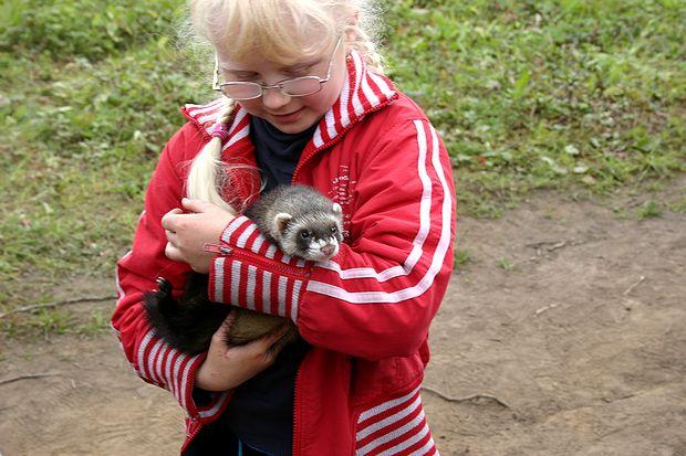 ペットのテンを抱く女の子