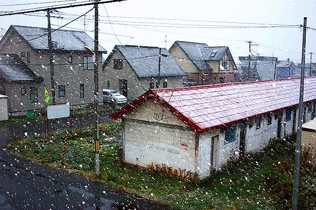 11月4日初雪