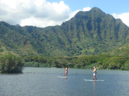 hawaiian fishpond092