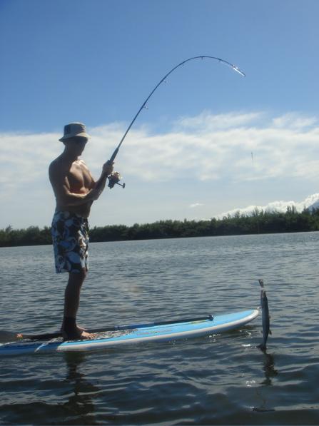 hawaiian fishpond093