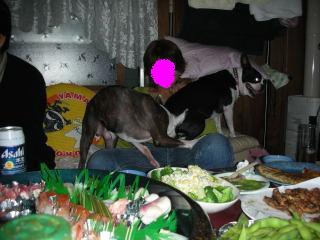 20061024-7