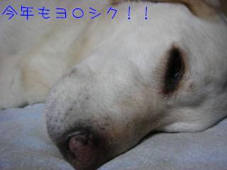 20080103-6