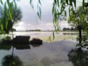 Yay Gölü①