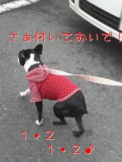 200611191106000.jpg