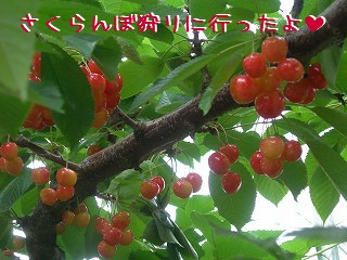s-DSCN3245.jpg