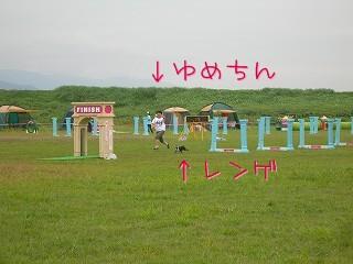 s-DSCN4542.jpg