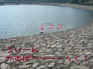 s-DSCN5060.jpg