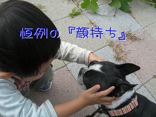 s-DSCN5387.jpg