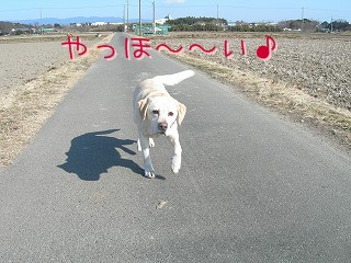 s-DSCN6344.jpg