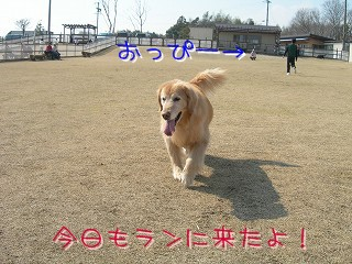 s-DSCN6727.jpg