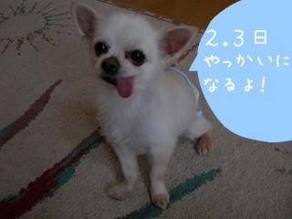 s-DSCN7757.jpg