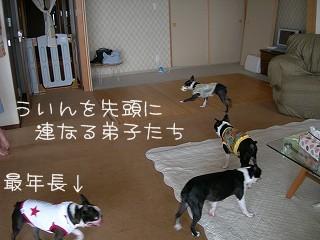 s-DSCN8542.jpg
