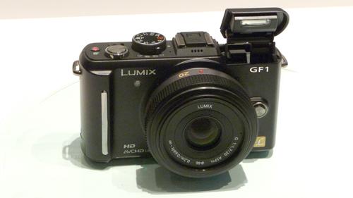 GF-1 P1060940