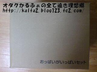 200812251025561.jpg