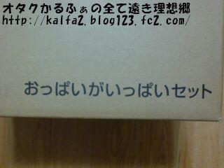 200812251923401.jpg