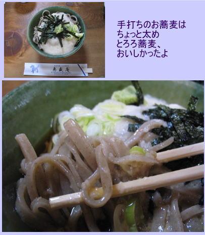 kiso001.jpg