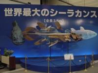世界最大のシーラカンス化石(全長3.8m)