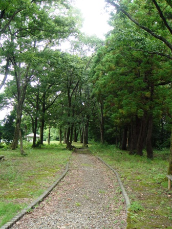 1.大崎山