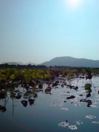 湖面よりみる角田山
