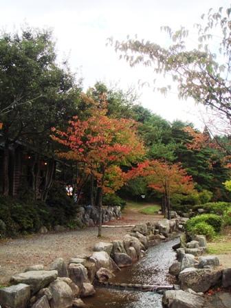 3.森林館ブログ