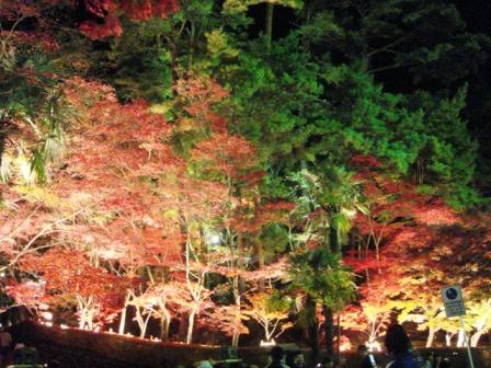 3.赤坂山松雲山荘(小)