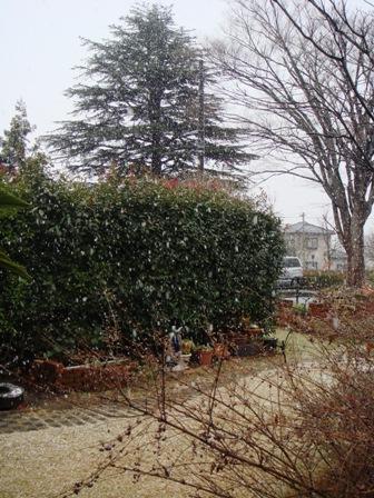 1-2.雪景色