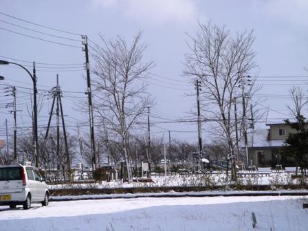 1.雪が降りました