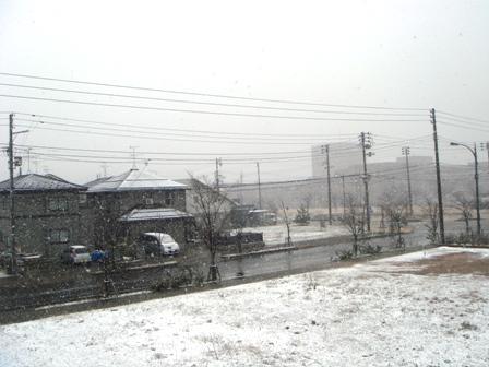 090326.雪景色