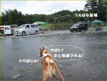 泳ぎは結構でござる。