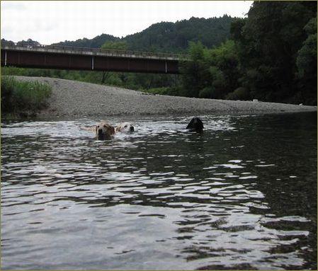 泳ぎの好きな3レト!