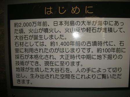 画像 507