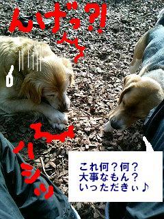 060215_102854.jpg