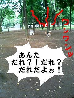 060811_165815.jpg