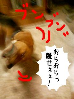 060822_194756.jpg