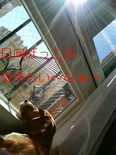 20060128223006.jpg