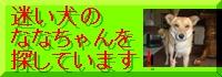 e0059936_20111093.jpg