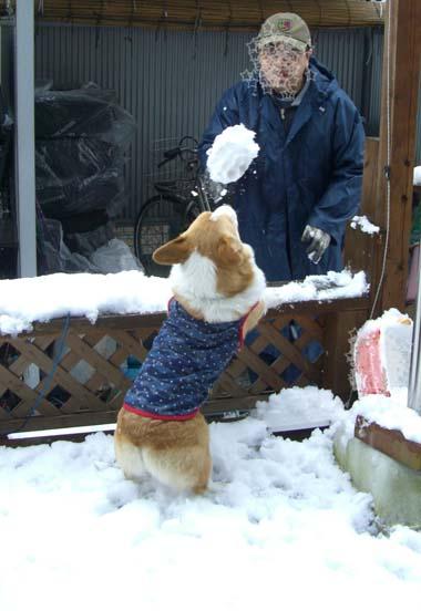 大きい雪だま~