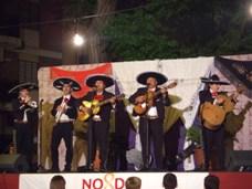 メキシカンセリ
