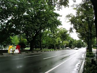 2006081