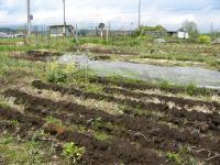 0805-14農園