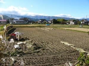 0810-28稲の脱穀