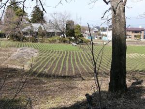 0903-17かえで農場