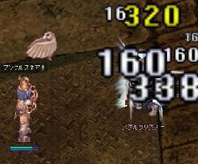 081004-4.jpg
