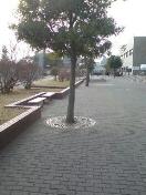 20080114105336