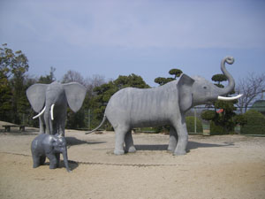 zoo001.jpg
