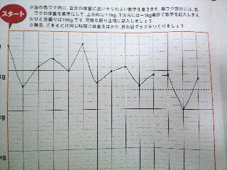 バナナダイエット2週間のグラフ