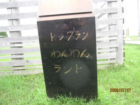 2009 7 27 dogrun