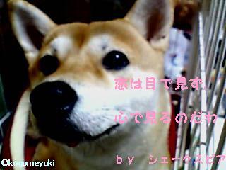 kakugen1.jpg