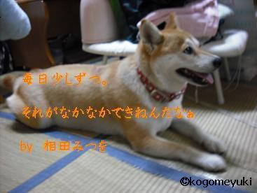 kakugen24.jpg
