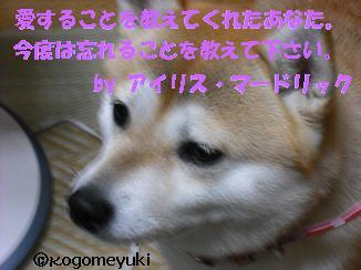 kakugen32.jpg